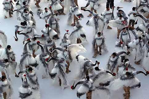 Symbole de bonheur, la grue censée apporter aux Chinois la félicité et une longévité à toute épreuve. C'est pour cette raison que ces patineurs des montagnes de Qipan ont revêtu le déguisement de l'échassier à l'occasion du Festival international de glace et de neige organisé par la ville de Shenyang, chef-lieu de la province du Liaoning, en Chine du nord-est. La qualité du spectacle est renforcée ici par le fait que les plumes grises et blanches, soulignées par l'aigrette rouge et le col noir de la grue, forment un mélange des plus heureux avec la surface glacée du lac. Une scène hivernale aux allures complètement surréalistes.