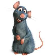 Rémi, le héros de Ratatouille (DR).