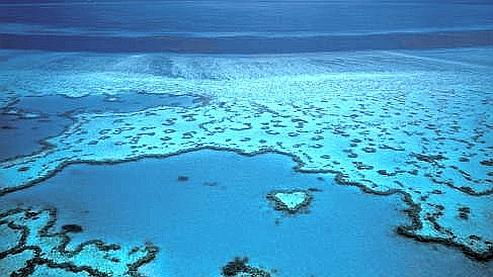 Des milliers de candidats ont postulé pour être le «gardien» des îles de la Grande barrière de corail en Australie. (DR)