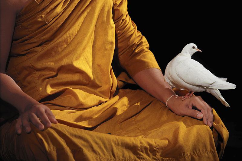 Le bouddhisme évoque la pureté, la sérénité, l'élévation spirituelle.