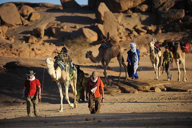 Marche d'approche vers les falaises de Tissalatine. Les chameaux portent les 200 mètres de cordes et la quincaillerie : mousquetons et pitons.