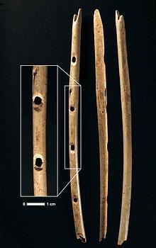 Un morceau de 3 cm de la flûte en os de 21,8cm de long.