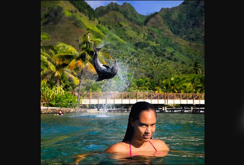 Jeux avec les dauphins du Moorea Dolphin Center, parc aquatique de l'hôtel Intercontinental.