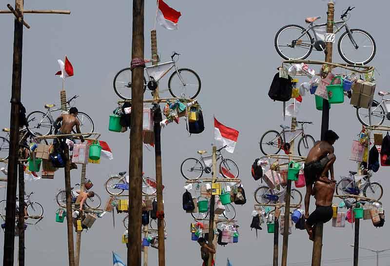 Pour célébrer le 64eanniversaire de son indépendance, le 17 août, l'Indonésie, ancienne colonie hollandaise, a multiplié les manifestations, les festivités et les concours. A l'image de ces immenses mâts de cocagne, dressés au centre de Jakarta, la capitale du pays, et hérissés de prix aussi variés que des vélos, des seaux en plastique ou des peluches. Honneur au premier servi et, surtout, au plus habile grimpeur. Le même jour, quelque 2 500 plongeurs équipés de tubas ont établi le record de la plus grande plongée collective à Manado, au large de l'île indonésienne des Célèbes, et ont déployé sous l'eau le drapeau national.