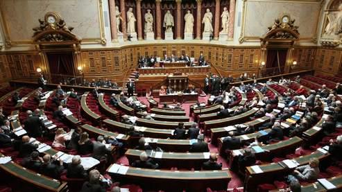 Jean-Pierre Raffarin avait déjà estimé mercredi qu'il n'y avait «pas de majorité au Sénat pour voter la réforme de la taxe professionnelle».