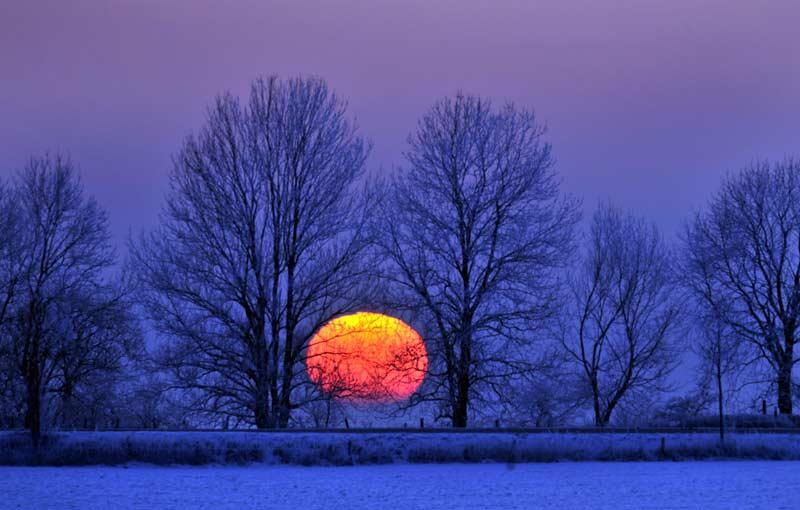 Coucher de soleil derrière les arbres enneigés près de Breckerfeld, en Allemagne, le 19 décembre 2009.
