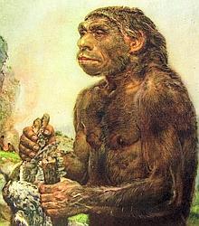 Dessins d'artiste d'un couple de néandertaliens.