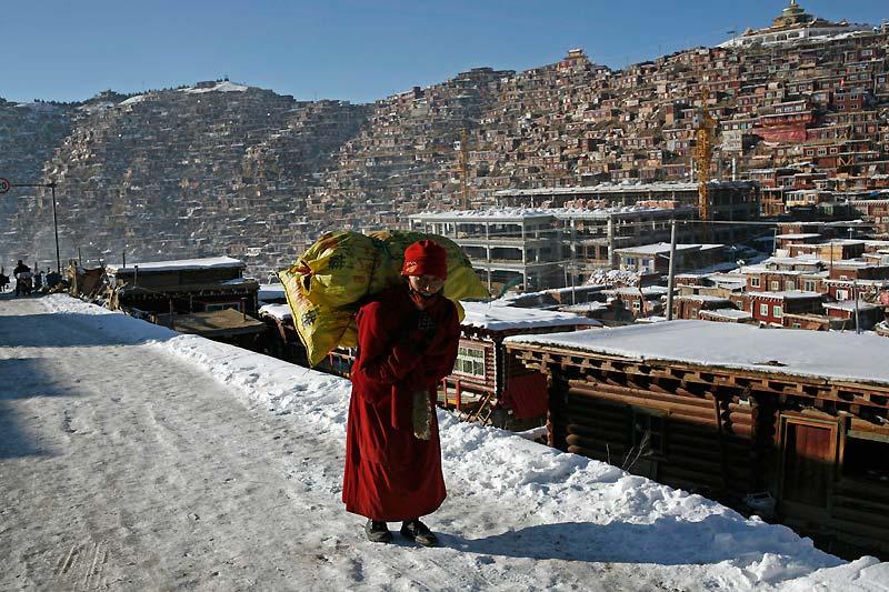 Cette foi, c'est le bouddhisme ; et ces montagnes, celles qui festonnent la vallée de Serthar, au coeur du Tibet oriental, dans la province chinoise du Sichuan. Entièrement recouvertes de temples et d'habitations individuelles, leurs pentes surpeuplées abritent la plus grande université bouddhiste du monde : plus de 10 000 moines, moniales et étudiants... dont au moins 2 000 Chinois ! Une anomalie qui s'explique par la tolérance (aussi récente qu'exceptionnelle) de la Chine envers cette gigantesque communauté spirituelle qui ne cesse de témoigner d'un apolitisme inébranlable : même en 2008, lors des émeutes de Lhassa, elle ne s'était pas soulevée.