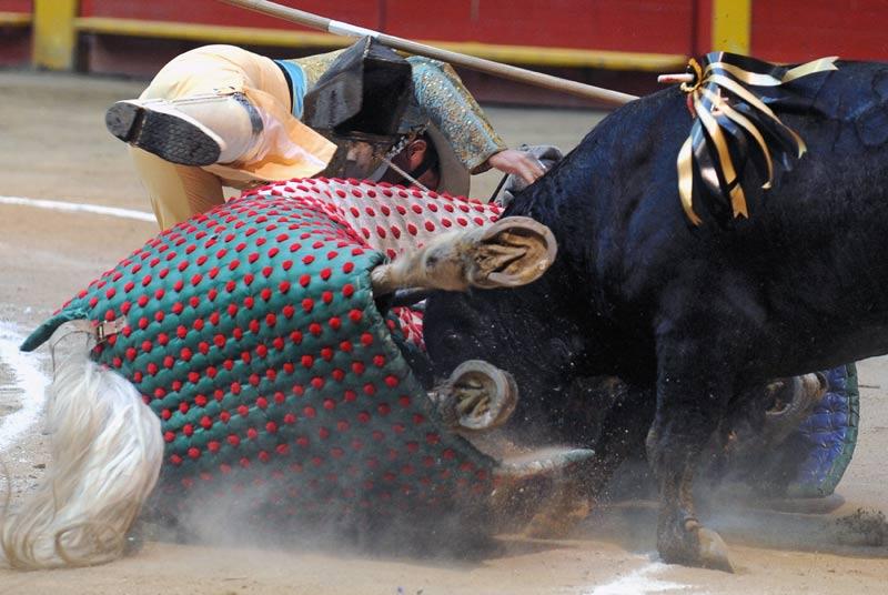 Choc. Un taureau se jette contre un picador et son cheval, à l'occasion d'une corrida, à Macarena, en Colombie, le samedi 23 janvier.