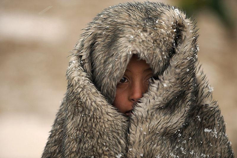 Un enfant se couvre le visage d'une peau de bête pour se protéger du froid, dans la province de Helmand, jeudi 28 janvier. Plus de la moitié de la population afghane vit encore sous le seuil de pauvreté et la majorité de l'activité économique ainsi que les administrations se concentrent dans la capitale, Kaboul.