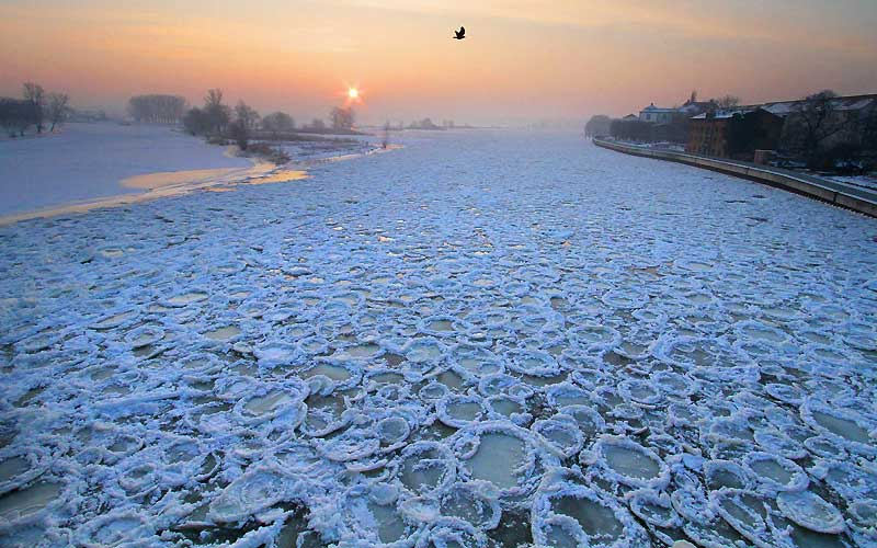Ronds de glace. Étonnante vue de l'Oder depuis un pont à Francfort, mercredi 27 janvier. Ce fleuve est recouvert de glace sur une centaine de kilomètres, entre l'Allemagne et la Pologne.