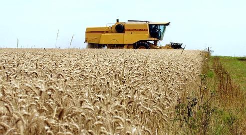 Peut-on réduire de moitié l'usage des pesticides?