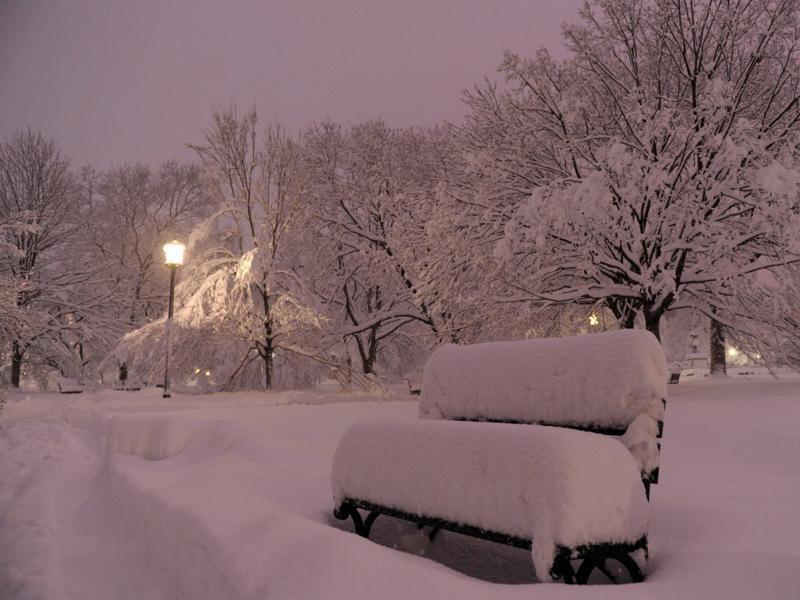 Cette nouvelle tempête survient moins de deux mois après celle du 19 décembre, qui avait enseveli Washington sous 40 centimètres de neige. Des chutes de neige de cette ampleur sont rares dans la région, a fortiori deux fois dans la même saison.