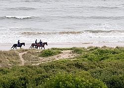 Des cavaliers le lont d'Omaha Beach, à Colleville-sur-Mer (Normandie).