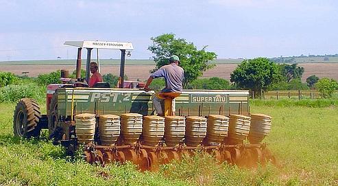 Le Brésil fait le pari des biotechnologies