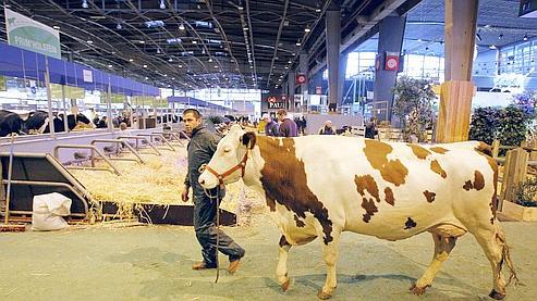 Le Salon de l'Agriculture démarre sans Sarkozy