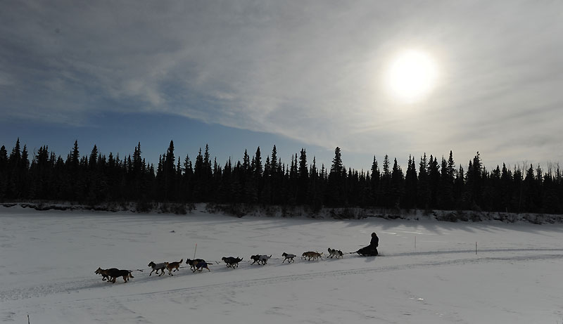 Mercredi 10 mars, arrivée de Jessie Royer à l'issue d'une des plus grandes courses de traîneau au monde : celle de l'Iditarod qui relie Anchorage à Nome, deux villes d'Alaska.