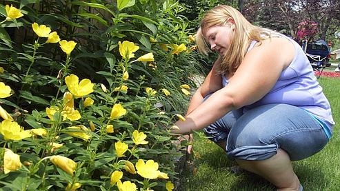 La flore intestinale influence la prise de poids c8dce5d0-2a93-11df-adc3-e40186a28835