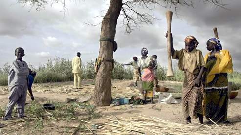 En raison de la baisse de la production agricole, les réserves de céréales des Nigériens sont maigres et souvent déjà épuisées.