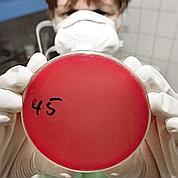 L'ADN des bactéries du sol va être épluché