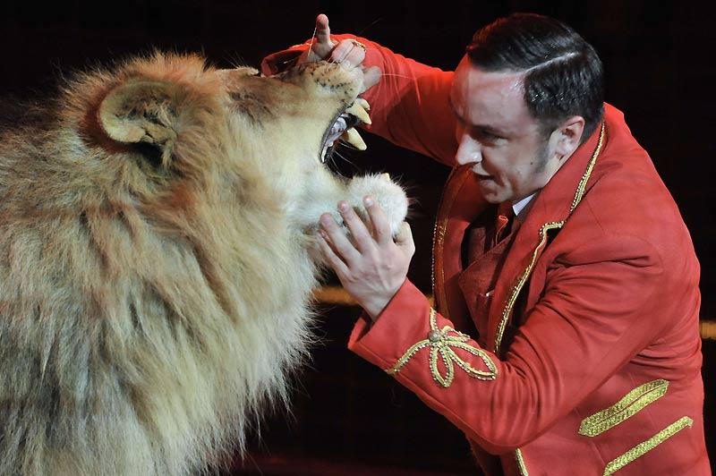 Le dompteur Vladislav Goncharov ouvre la gueule d'un de ses lions lors des répétitions du cirque à Budapest, en Hongrie, jeudi 25 mars.