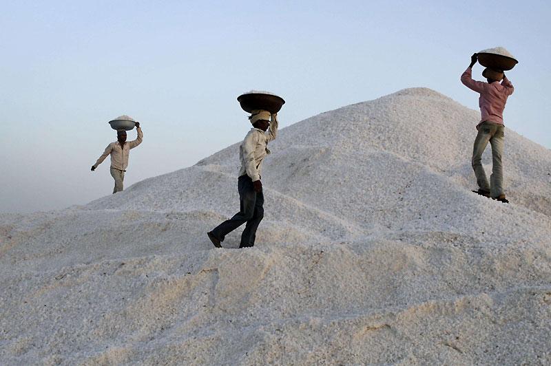 Mercredi 31 mars, des ouvriers livrent du sel dans un lieu de stockage près de Kharaghoda, en Inde.