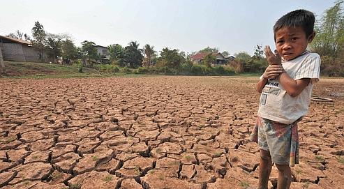 Les conséquences au Laos de la baisse du niveau du Mékong : il devient difficile pour les agriculteurs d'entretenir leurs champs .