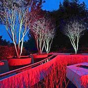 Philips Eclairage fait son show côté jardin