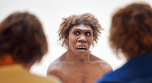 1 à 4% du génome de l'homme moderne pourraient provenir des néanderthaliens.