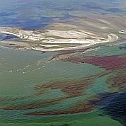 Marée noire : la Louisiane se prépare