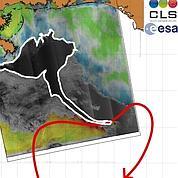 USA : la marée noire se dirige vers la Floride