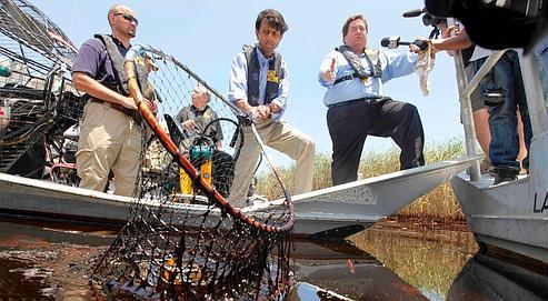 Le gouverneur de Lousiane, Bobby Jindal (avec l'épuisette), constate jeudi les dégâts dans les marais.