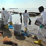 Marée noire : des signes avant-coureurs ignorés