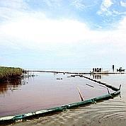Marée noire : la fuite de pétrole stoppée