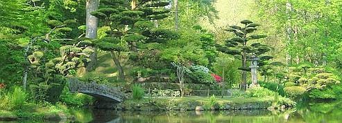 S'offrir un beau jardin
