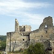 Les châteaux français en péril