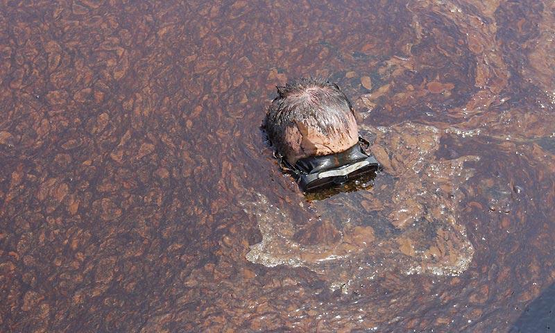 Lundi 7 juin, cet homme plonge dans le golfe du Mexique, afin de constater l'ampleur des dégâts provoqués par la marée noire.