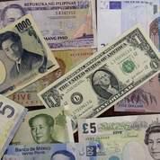 L'euro se reprend après «avoir chuté trop vite»