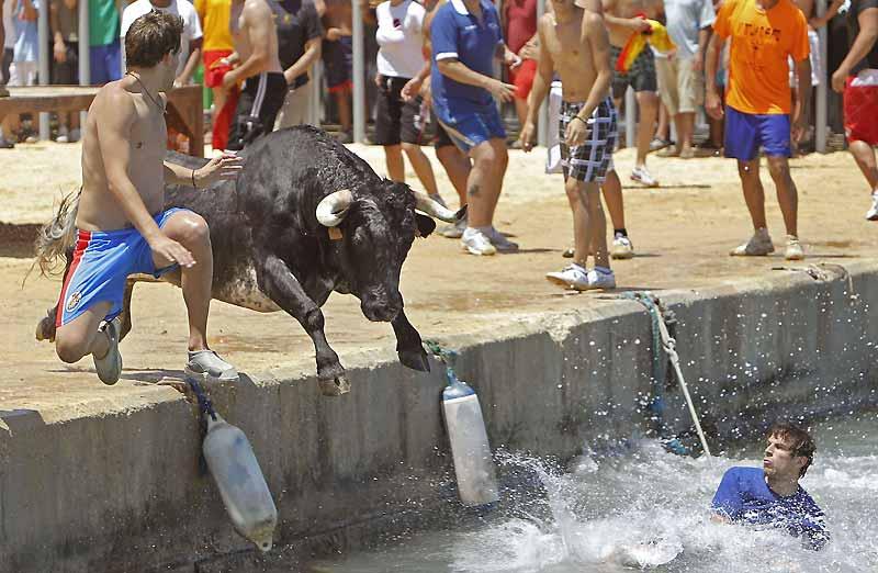 À mi-chemin entre Alicante et Valence, Dénia accueille chaque année «El Bous a la Mar», cette fête locale qui consiste en une course de taureaux à travers les rues de la ville depuis les arènes jusqu'au port. Il arrive souvent que les bêtes, mais aussi les coureurs, finissent par tomber à l'eau, comme ici, lundi 5 juillet.