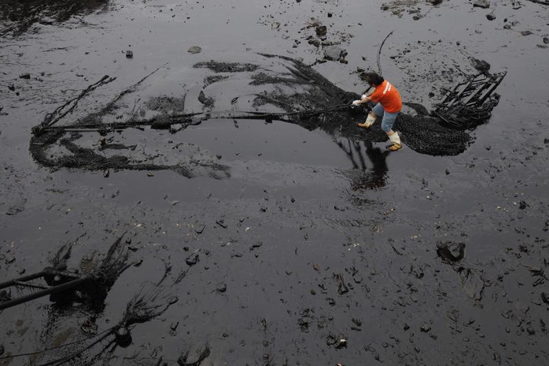 Un militant de Greenpeace constate l'étendue des dégâts, mercredi.  Plusieurs plages et une île touristique ont été fermées au public près  du port de Dalian, alors que les autorités tentent de nettoyer la nappe  qui s'étend sur au moins 183 km2.