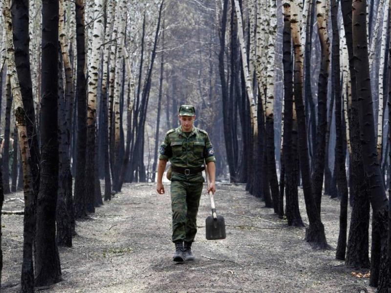 Le président russe Dmitri Medvedev a fait appel à l'armée vendredi pour lutter contre ces sinistres. 240.000 hommes, dont 2.000 militaires et 16.000 pompiers, sont mobilisés. Ils disposent de 25.000 véhicules et 226 avions et hélicoptères. Les incendies ont détruit 77 villes et villages.