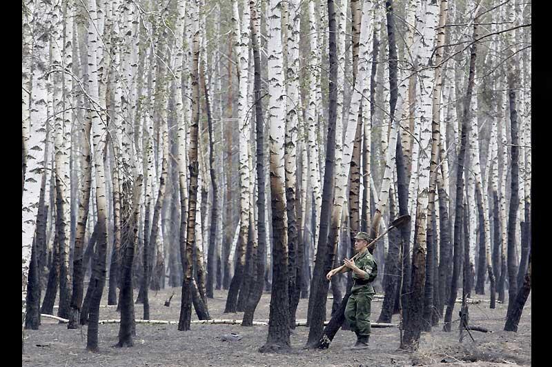 Samedi 30 juillet, dans les environs de Voronezh, un soldat russe traverse une forêt de bouleaux ravagés par les flammes. La Russie connaît sa pire canicule depuis 130 ans et près de 700 feux ont déjà dévorés plus de 1000km2.
