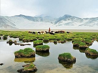 Marco Polo est entré en Chine via la chaîne du Pamir, dans la province du Xinjiang. Des sommets qui culminent presque à 8000 mètres et des lacs de montagne. Les nomades de la minorité kirghize y pratiquent l'élevage.