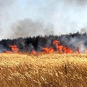 Russie: solvable malgré le désastre écologique