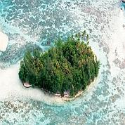 «Robinson milliardaire ch. île déserte.»
