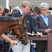 Trou d'air dans les ventes de yearlings