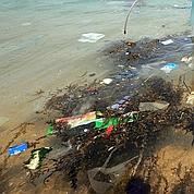 Une mer de plastique dans l'océan Atlantique