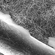 Traiter l'eau avec un filtre en tissu électrifié