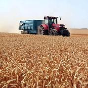 Le Monopoly mondial des terres agricoles