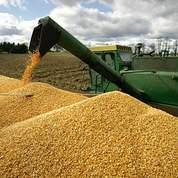 Argent et maïs au plus haut